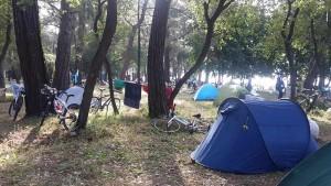 İlk kamp alanımız Çubucak Orman Kampı